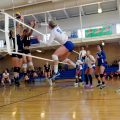 volleyball genouillères